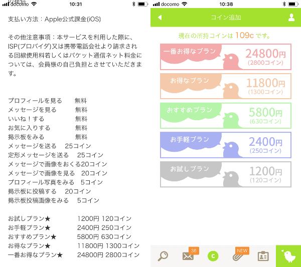 ソーシャルネットワーキング(SNS)キミマチの料金表